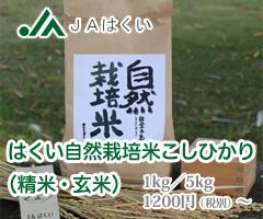 JAはくい自然栽培米コシヒカリ
